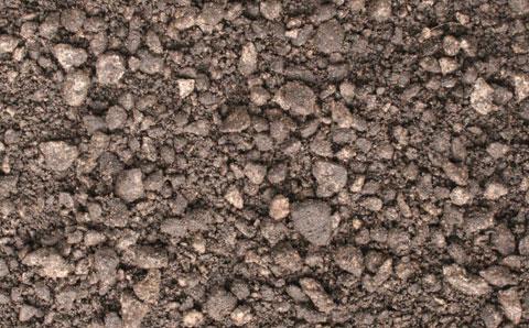 芝生用土壌